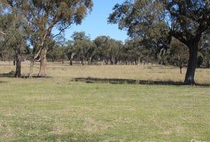471 Watson's Cr Road, Watsons Creek, NSW 2355