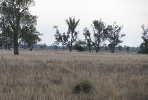 Lts1 & 3 Wambianna Rd, Warren, NSW 2824