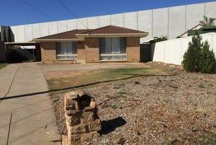 19 Warringa Street, Salisbury Plain, SA 5109