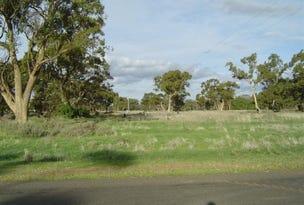 Lot 5, Dundoo Street, Euabalong, NSW 2877
