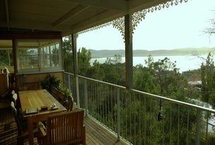 68 Fisher Avenue, Sandy Bay, Tas 7005