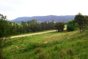 L3 Mount View Road, Millfield, NSW 2325