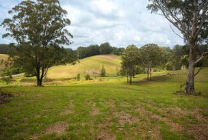 Lot 572 Irvines Road, Newee Creek, NSW 2447