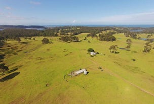 Narooma, address available on request
