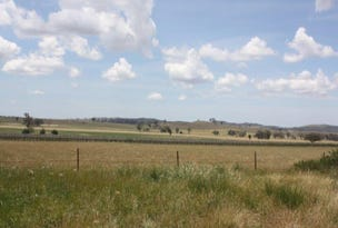 48 Berowra Road, Dunedoo, NSW 2844