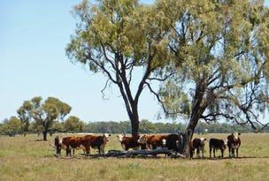 0 Oakleigh and Terangan, Nevertire, NSW 2826