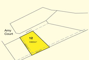 Lot 12 Amy Court, Norman Gardens, Qld 4701