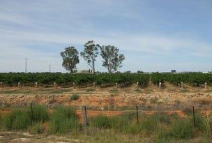 "Lot 5,6,9 ""Minninya Vineyards""Perricoota Road, Moama, NSW 2731"