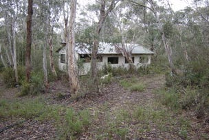 Pines Track, Bendoc, Vic 3888