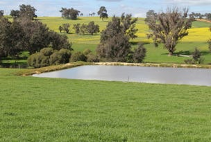 Lot 100 Donnybrook - Boyup Brook Road, Boyup Brook, WA 6244