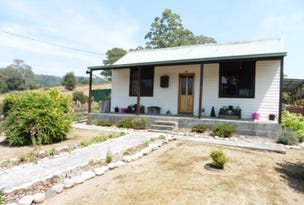 29767 Tasman Highway, Weldborough, Tas 7264