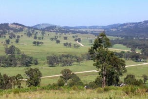 1465 Ten Mile Road, Deepwater, NSW 2371