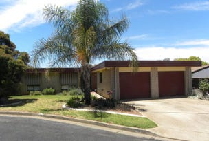 16 Crichton Cresent, Young, NSW 2594