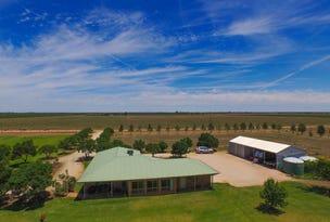 Farm 283B Toorak Rd, Leeton, NSW 2705