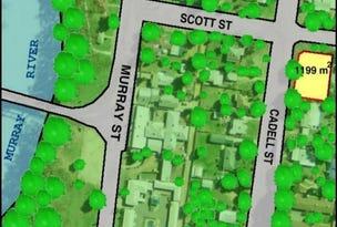 59 Cadell Street, Tooleybuc, NSW 2736