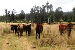 8030 ACRES BREEDER COUNTRY, Mundubbera, Qld 4626