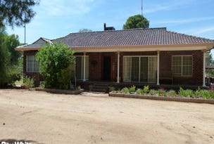 352 Calarie Road, Forbes, NSW 2871