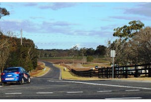 Lot 124, 10 Grahamstown Road, Medowie, NSW 2318