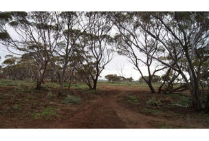 Lot 82, Mount Mambray Creek Road, Port Germein, SA 5495