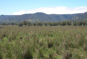 Pandora, Coolah, NSW 2843