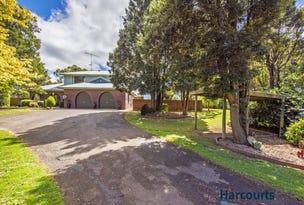 498 Ridgley Highway, Mooreville, Tas 7321