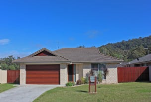 1 Celtic Circuit, Townsend, NSW 2463