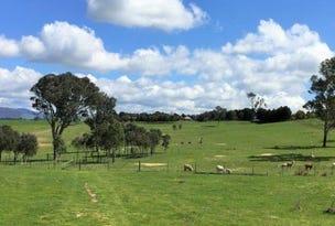 2963 Dog Trap Road,, Jeir, NSW 2582