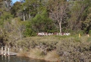 70 Dalton Way, Molloy Island, WA 6290