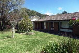 291 Paddys Plain Road, Dorrigo, NSW 2453