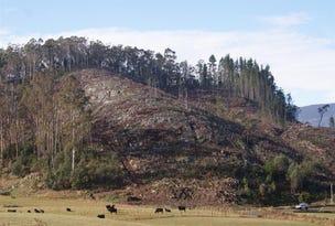 0 Caveside Road, Mole Creek, Tas 7304