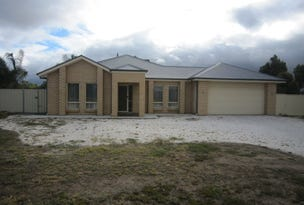 14 Clydesdale Road, Two Wells, SA 5501