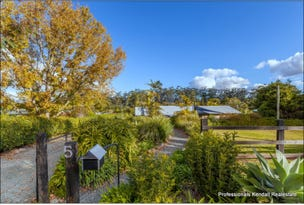 7 Ocola Ct, Tamborine Mountain, Qld 4272