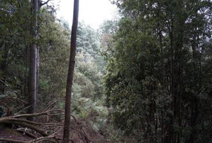 Lot 1B Blairs Road, Mole Creek, Tas 7304