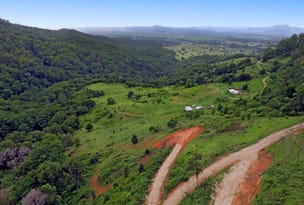 Lot 1 Tomewin Road, Tomewin, NSW 2484