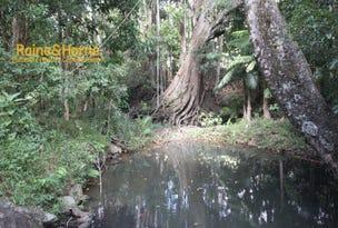 213 Sleepy Hollow Road, Pottsville, NSW 2489