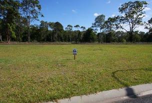 Lot 64 Scullin Street, Townsend, NSW 2463