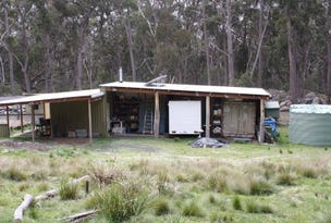 3 Carrot Farm Road, Deepwater, NSW 2371