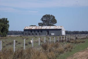 5560 Barham Deniliquin Road, Thule, NSW 2732