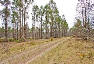 PID 646598 Pipers River Road, Pipers River, Tas 7252