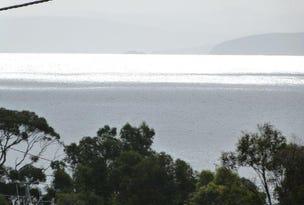 533 White Beach Road, White Beach, Tas 7184