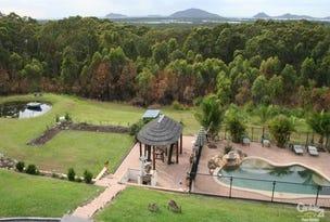 58 Viney Creek Rd, Tea Gardens, NSW 2324
