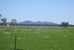 1 Lake Cargelligo-Euabalong Rd, Lake Cargelligo, NSW 2672