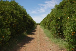 Farm 1080 Bonomi Road, Willbriggie, NSW 2680
