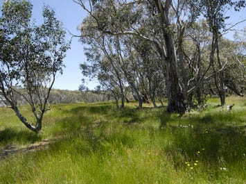 Lot 1, 10 Horsehair Bend, Dinner Plain, Vic 3898