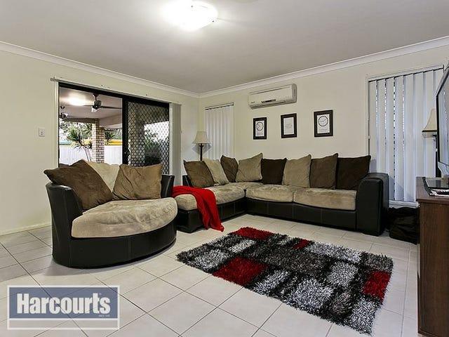6 Whites Court, Albany Creek, Qld 4035