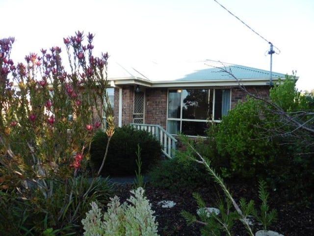 91 Richard Street, Bridport, Tas 7262