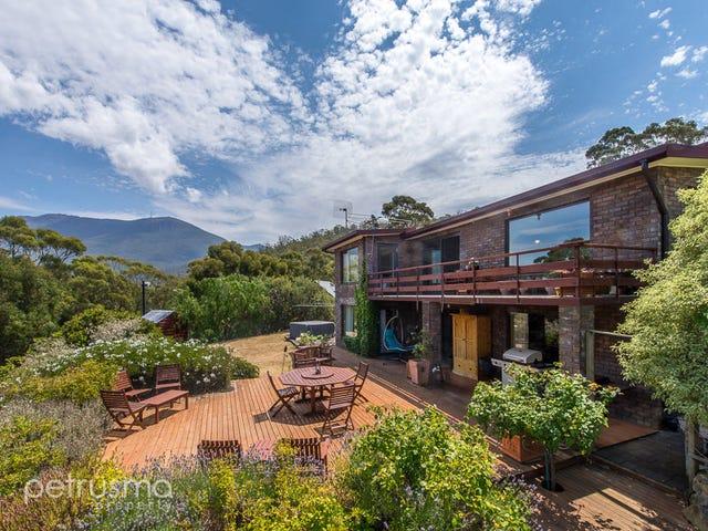 188 Forest Road, West Hobart, Tas 7000