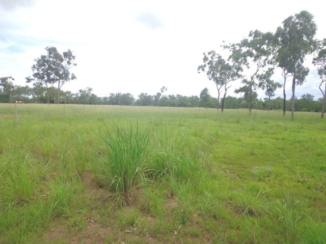 Lot 1768, Walter Road, Acacia Hills, NT 0822