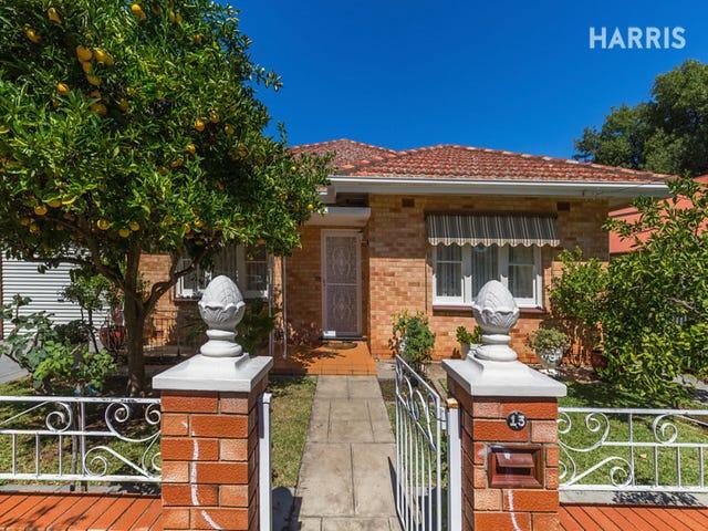 13 Alfred Street, Parkside, SA 5063