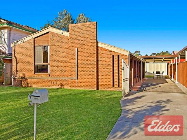 77 Rausch Street, Toongabbie, NSW 2146